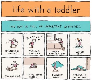 Life with a toddler