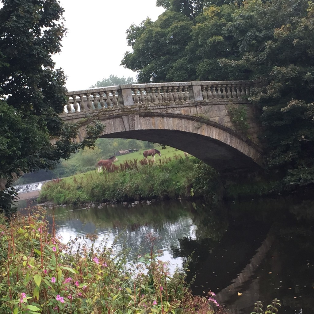 pollok-park-bridge-horses
