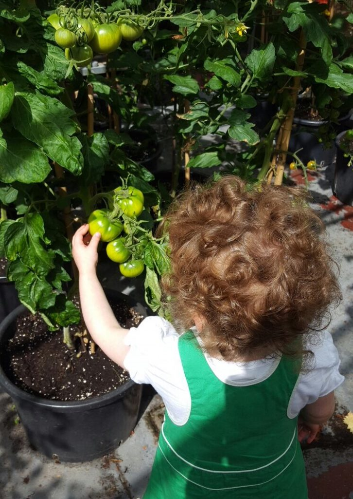 greenbank-gardens-glasgow-with-a-toddler