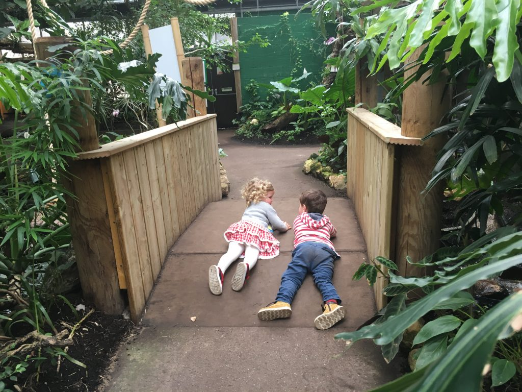 amazonia-with-toddlers