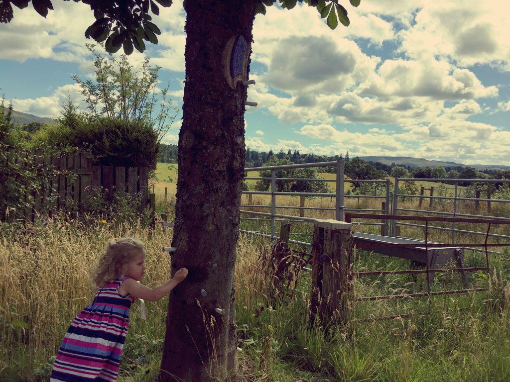 woodland-fairy-experience-balloch